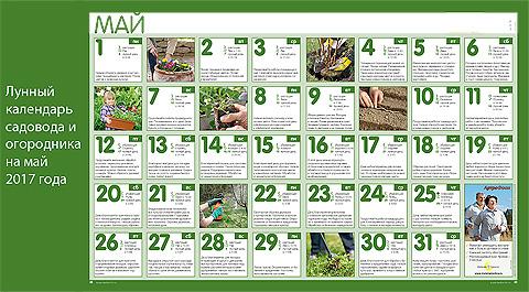 Calendario Di Semina.Calendario Della Semina Lunare Sull Erba